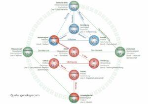Gene Keys, hologenetisches Profil, Genschlüssel